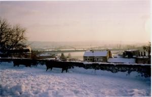 belgradepark