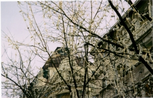 "Beograd, the ""white city"""