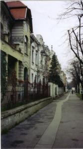 road leading to Trdva