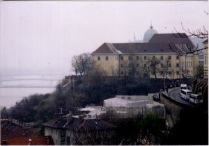 Buda overlooking the danube
