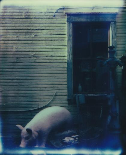 Giant piggy (bank) and a peek of sun, Charleroi.