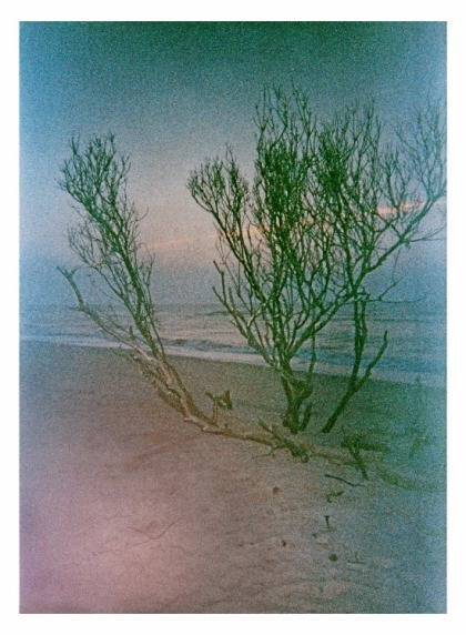 Untitled on expired film by Julie Skidmore